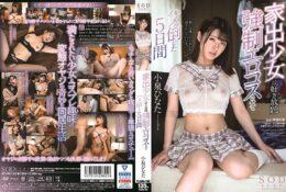 (HD) STARS-162 小泉日向 離家少女強制換穿性感服裝搞到爽的5日間[有碼高清中文字幕]